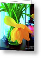 Buttercup Droop 2 Greeting Card