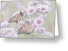 Butterflies And Bee Greeting Card