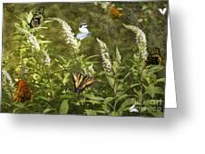 Butterflies In Golden Garden Greeting Card