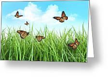 Butterflies In Tall Wet Grass  Greeting Card