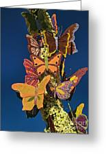 Butterflies On A 2015 Rose Parade Float 15rp047 Greeting Card