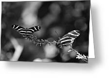 Butterflies On A Wire Greeting Card