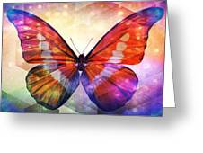 Butterfly 14-1 Greeting Card
