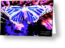 Butterfly 4 Greeting Card