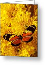 Butterfly Abstract Greeting Card by Garry Gay