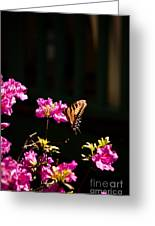 Butterfly And Azalea Greeting Card