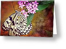 Butterfly Art - Hanging On - By Sharon Cummings Greeting Card
