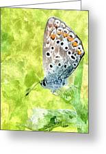Butterfly Art Prints Greeting Card