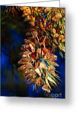 Butterfly Cluster Fractal Greeting Card