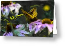 Butterfly Coneflowers 2 Greeting Card