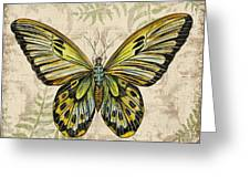 Butterfly Daydreams-a Greeting Card