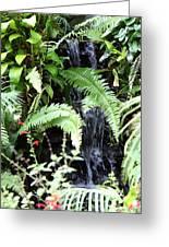 Butterfly Farm - Phuket Thailand - 011338 Greeting Card
