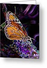 Butterfly Garden 24 - Monarch Greeting Card