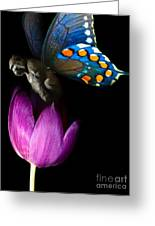 Butterfly-gorilla Greeting Card by Soumya Bouchachi