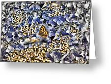 Butterfly In Blue Greeting Card