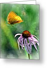 Butterfly In Flight Greeting Card by Marty Koch