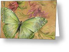 Butterfly Inspirations-a Greeting Card