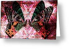 Butterfly Kaleidoscope Greeting Card