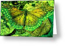 Butterfly Mimetism Greeting Card by Jo Ann
