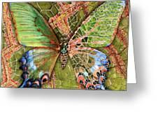 Butterfly Mosaic 03 Elena Yakubovich Greeting Card by Elena Yakubovich