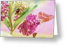Butterfly Power Struggle Greeting Card