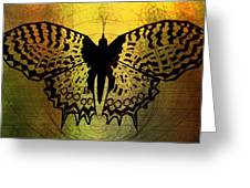 Butterfly Symmetry 2 Greeting Card