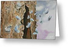 Butterfly Tree Greeting Card by Paula Marsh