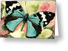 Butterfly Visions-b Greeting Card