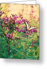 Butterfly Wildflower Greeting Card