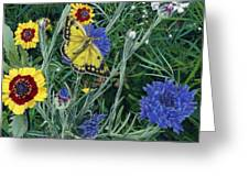Butterfly Wildflowers Spring Time Garden Floral Oil Painting Green Yellow Greeting Card