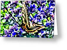 Butterfly With Purple Flowers 4 Greeting Card