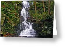 Buttermilk Falls Greeting Card by Sheila Savage