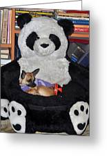 Button And The Panda Bear Greeting Card