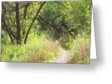 Buttonwood Forest Greeting Card
