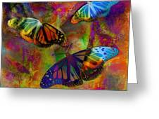 Buttrerfly Collage All About Butterflies Greeting Card