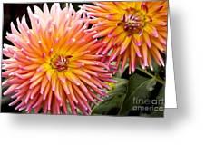 Buy Me Flowers Greeting Card
