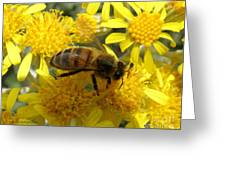 Buzzzzzy Greeting Card by Lainie Wrightson