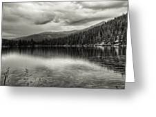 Bw Bear Lake Greeting Card