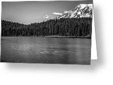 bw Greeting Card