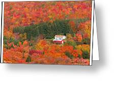 By Autumn Surrounded Greeting Card