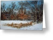 By Rattlesnake Creek Greeting Card