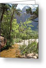 By The Emerald Pools - Zion Np Greeting Card