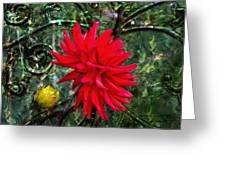 By The Garden Gate - Red Dahlia Greeting Card