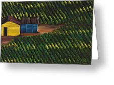 Cabbage Field Greeting Card