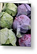 Cabbage Friends Greeting Card