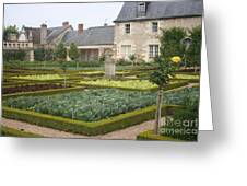 Cabbage Garden  Chateau Villandry Greeting Card