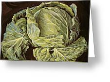 Cabbage Still Life Greeting Card