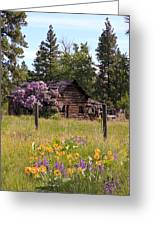 Cabin And Wildflowers Greeting Card