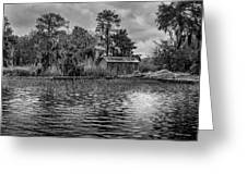 Cabin Greeting Card by David Mcchesney