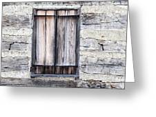 Cabin Fever Greeting Card by Dale Kincaid